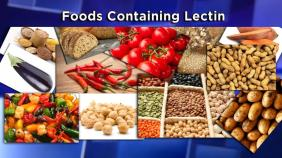 Foods containing lectin