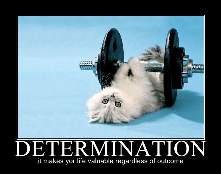 determination.jpg