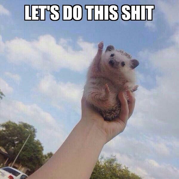 Lets do it