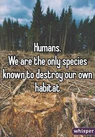 destroying habitat