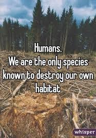 destroying habitat
